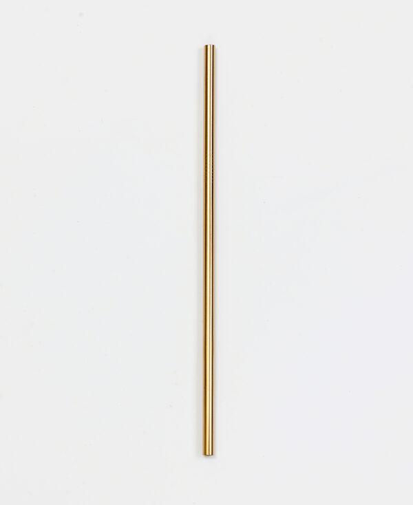Staalsugeroer fra Concept zero i guld